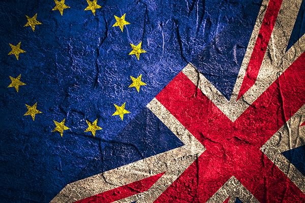 Brexit website image