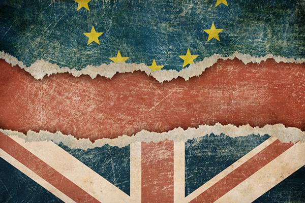 Brexit one week on website image