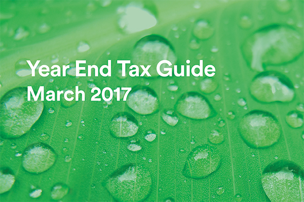 Year end tax guide website image